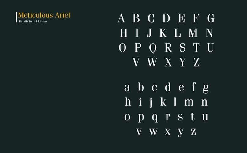 Meticulous Ariel шрифт скачать бесплатно
