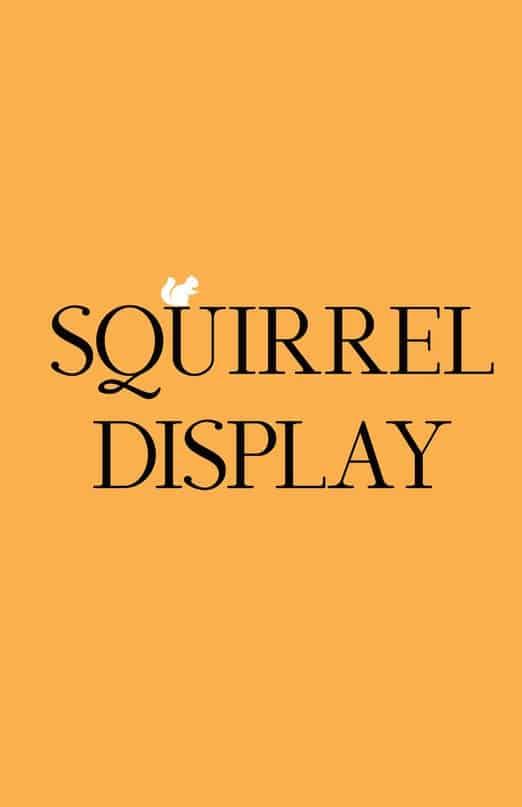Squirrel COM шрифт скачать бесплатно