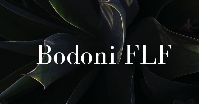 Bodoni FLF шрифт скачать бесплатно