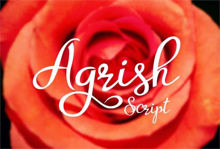 Agrish шрифт скачать бесплатно
