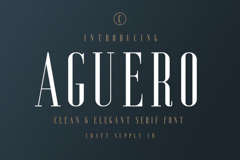 Aguero Serif шрифт скачать бесплатно