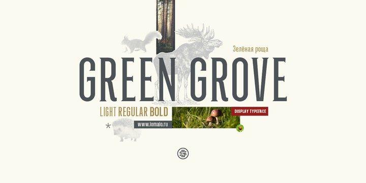 Green Grove шрифт скачать бесплатно