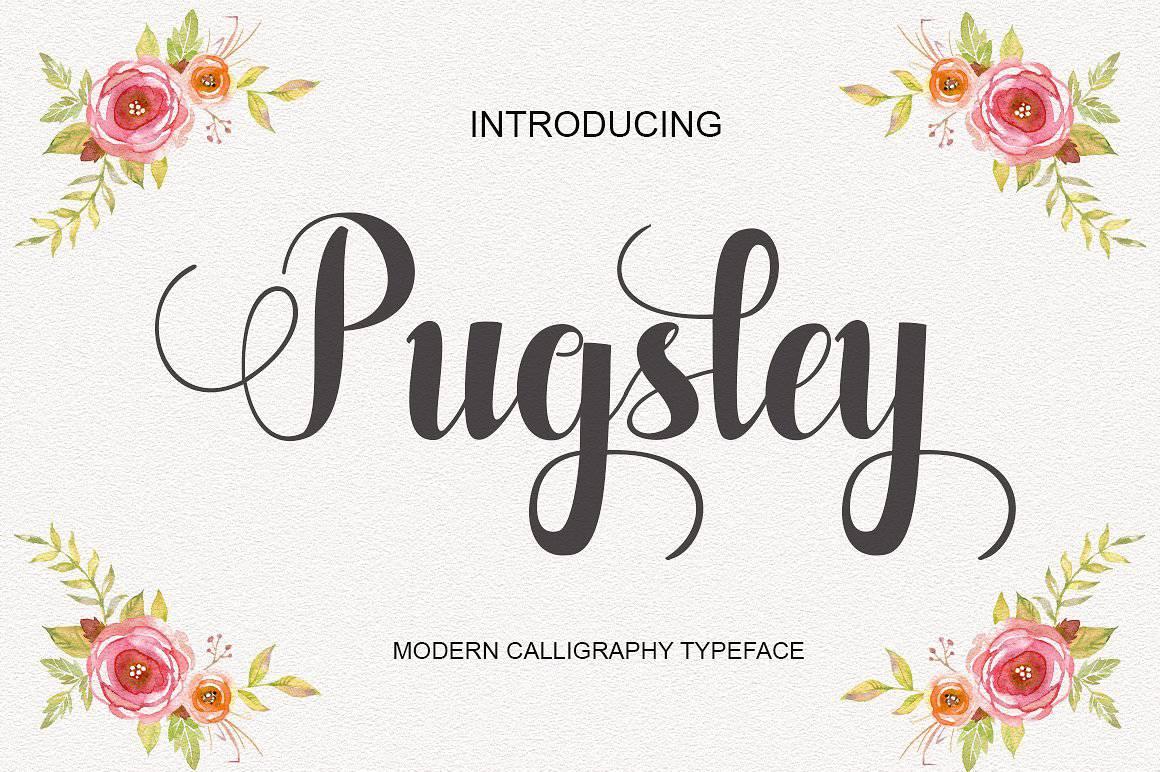 Pugsley шрифт скачать бесплатно